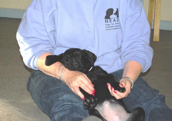 (2012-11) chantey resting